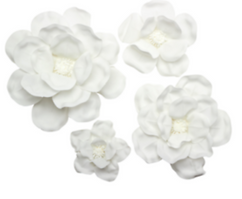 White Foam flowers