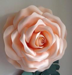 Blush Foam flowers