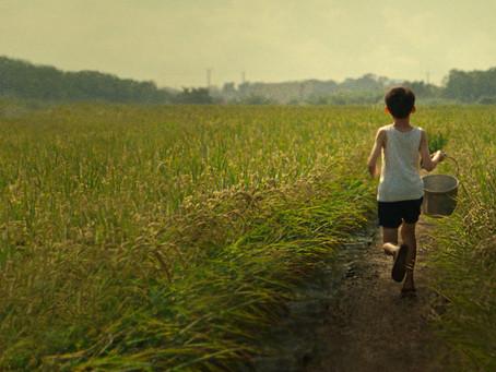 FILM REVIEW: TIGERTAIL