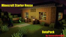 Minecraft Starter House!