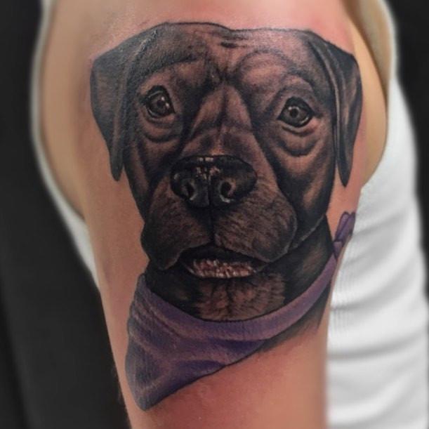 Here's a sweet dog portrait that I did l