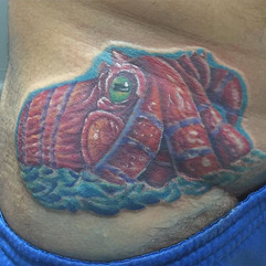 First session octopus done late last nig