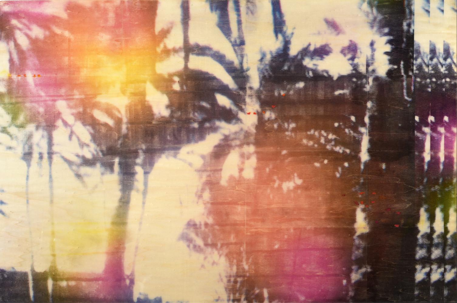Pacific Paradise , 2019