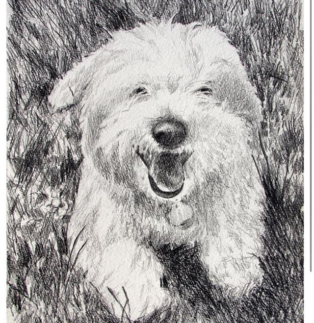#graphite #commissionedart #petportrait.