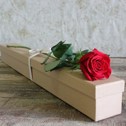 Single Rose Box $35