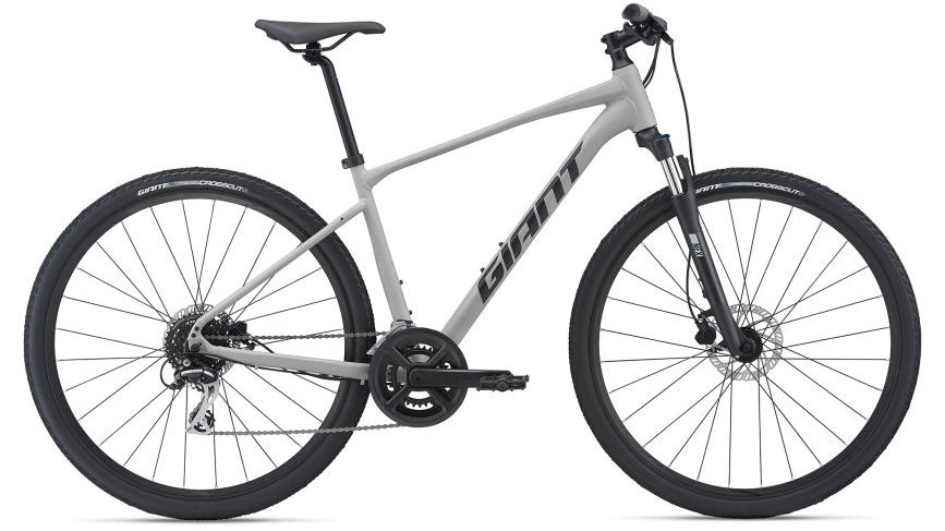 2021 Giant Roam 3 Disc