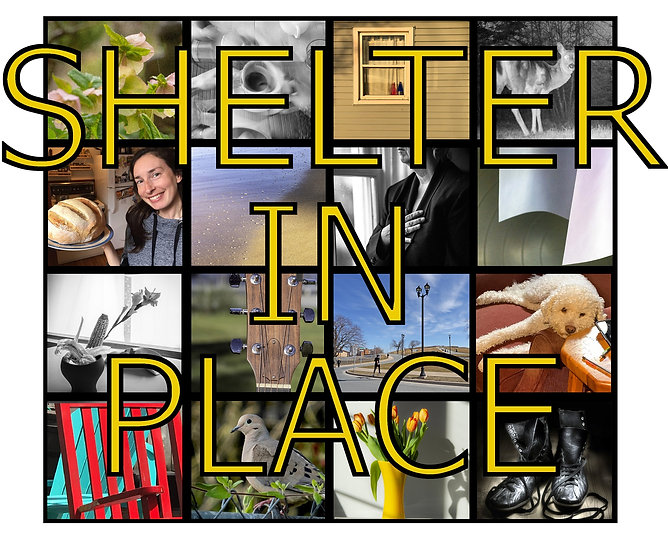 Shelter in Place poster for homepage v3.