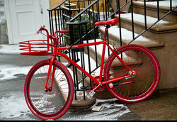 NEILSEN_ VPG Web_Red Bicycle