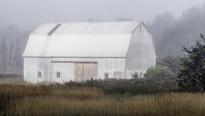 misty morning hop