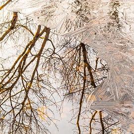Nature's Reflection.jpg