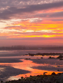 River of Pink, Eagle Head Beach, NS
