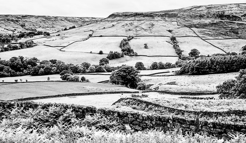 Yorkshire Tapestry