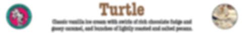 CS Turtle.jpg