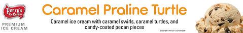 Caramel PralineTurtle Sm.jpg