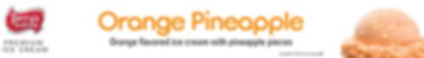 OrangePinapple Sm.jpg