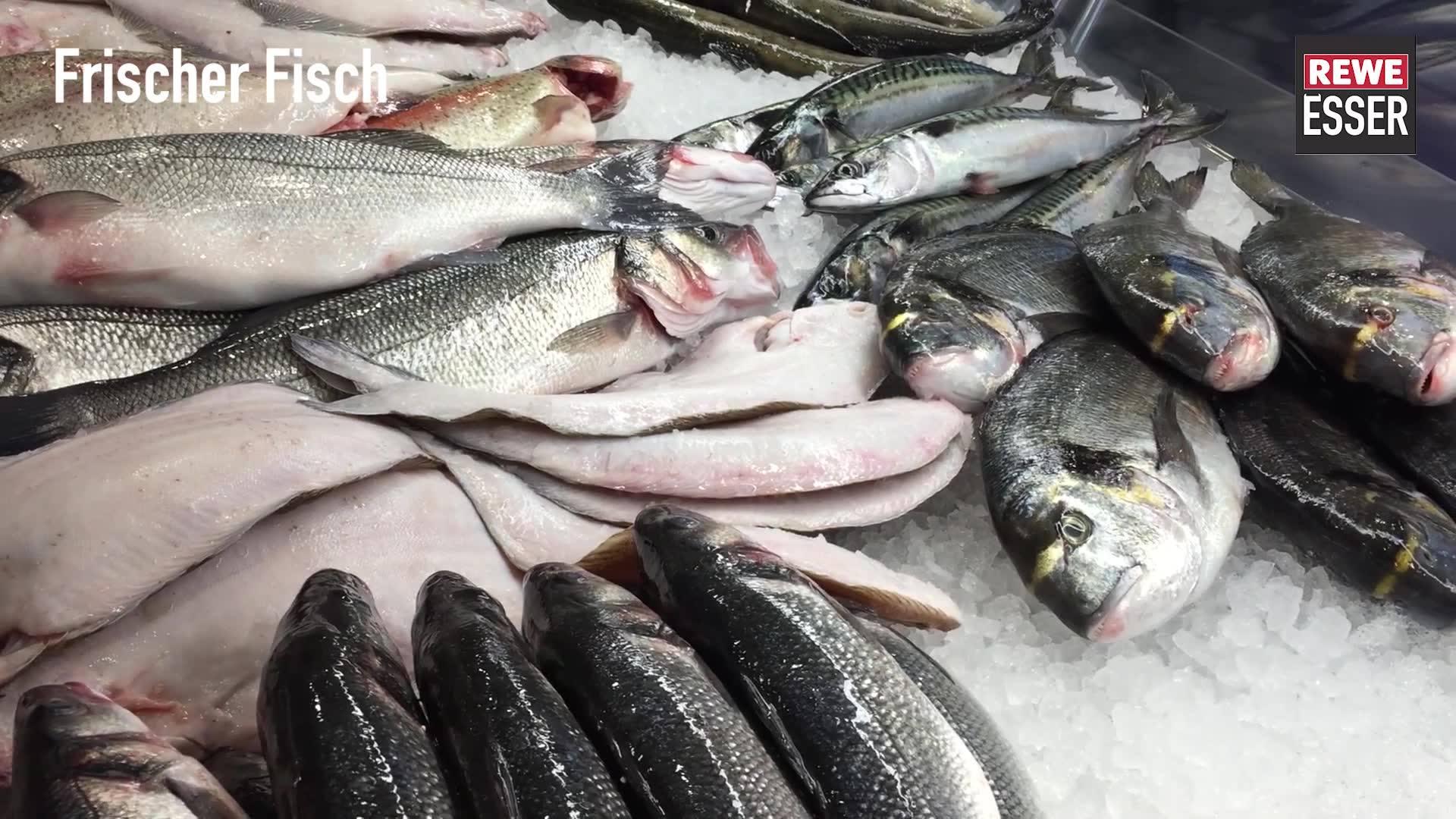 Fisch Zegel Burtscheid