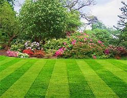 Best Lawn Care & Lawn Maintenance Service Paramus NJ