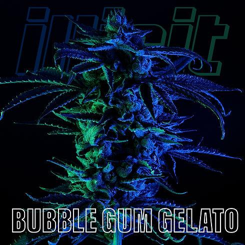 illicit-two-tone-bubble-gum-gelato-0.jpg