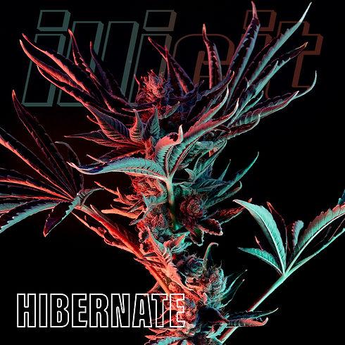 illicit-two-tone-hibernate-0.jpg