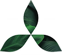 trinity-dispensary-logo.png