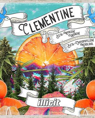 illicit-flower-pre-packed-eighth-clementine-2.jpg