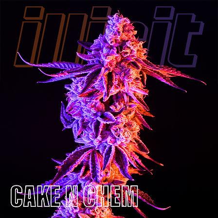 illicit-two-tone-cake-n-chem-1.jpg