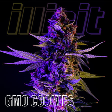 illicit-two-tone-gmo-cookies-1.jpg