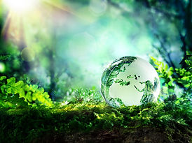 globe resting on moss in a forest - Euro