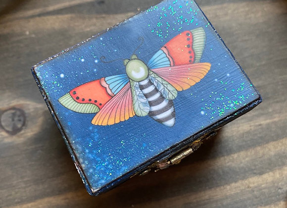 Itty Bitty Moth Box