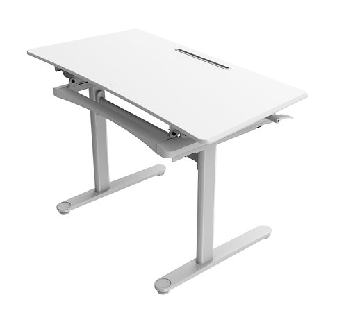 ACF Surge Height Adjustable Desk