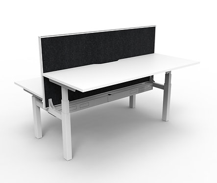ACF Paramount Back-to-Back Height-Adjustable Desk with Screens