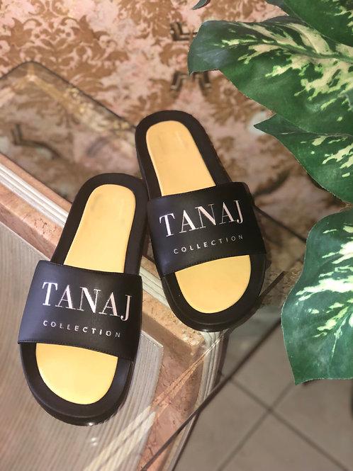 Tanaj Slides