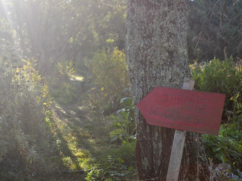 Ferme-Potager-un-curieux-vaucluse-panneau.jpg