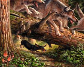 Wiener Wolf