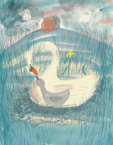 Iris Swan