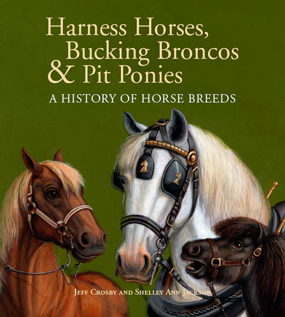 Harness Horse Cover