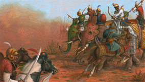 Harness Horse Marwari