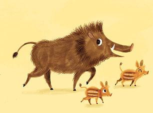 pigfamily.jpg