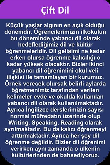 çift_dil.png