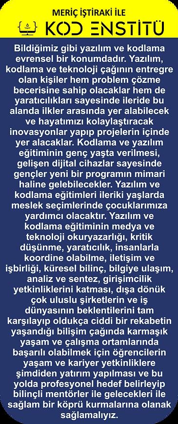 KOD ENSTİTÜ.png