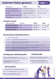 ATV-guias_Exploración física.jpg