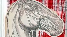 anatomía . cabeza