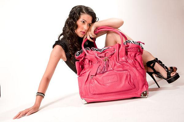 Handbag on Wheels