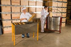 honey producers