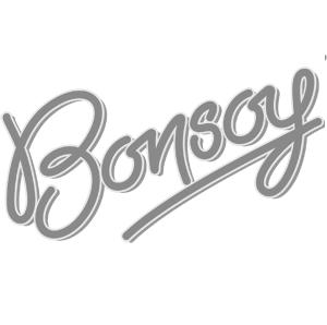 Bonsoy Soy Milk