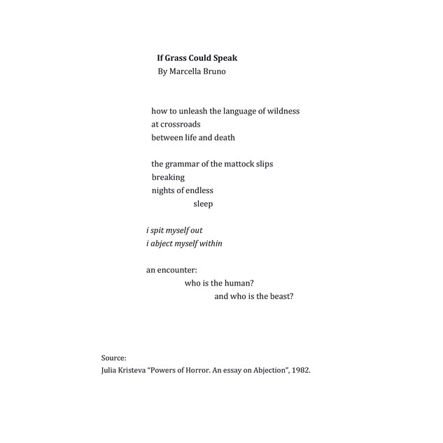 If Grass Could Speak by Marcella Bruno .