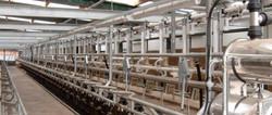 Milk Meter Installation