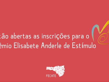 Estão abertas as inscrições para o Prêmio Elisabete Anderle de Estímulo à Cultura