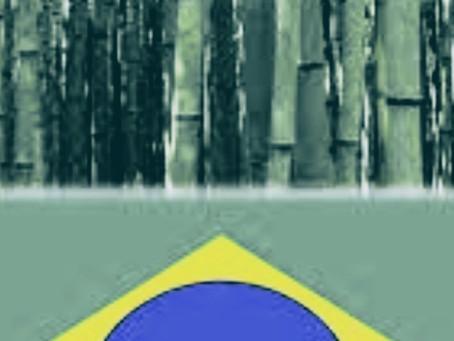 Producción de azúcar de Brasil sube 55% en mayo; ventas de etanol se recuperan