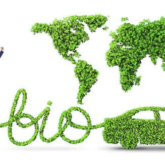 Petroleras Vs. Biocombustibles